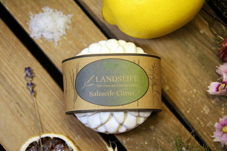 Naturseife - Salzseife Citrus | 90 g